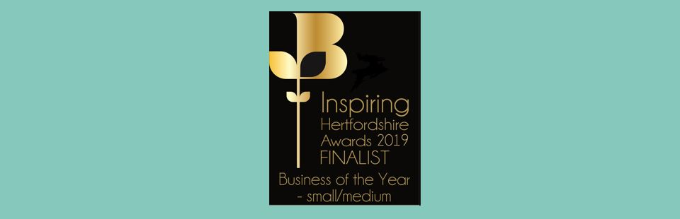 Business of the Year Small to Medium